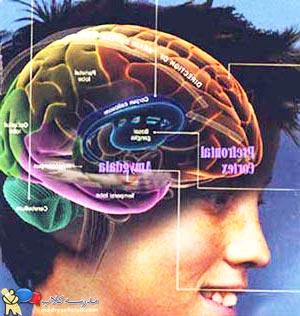 مغز نوجوان
